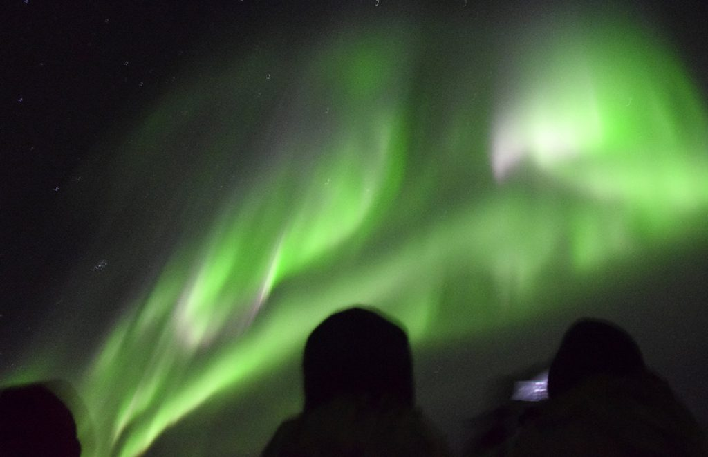 The beautiful colours of the Northern Lights seen on a boat from Reykjavik