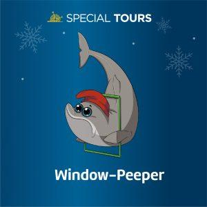 Gluggagægir (Window Peeper)